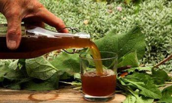 Народные рецепты с соком из лопуха