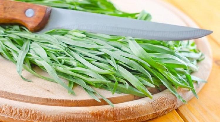 Полезные свойства и противопоказания к употреблению травы тархун