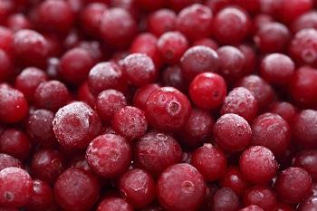 Польза и вред ягод брусники для организма человека, ее химический состав