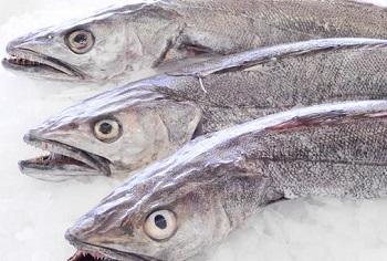 Правила выбора качественной рыбы - хек и его полезные свойства