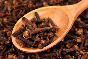 Целебные свойства приправы гвоздики, ее состав и калорийность