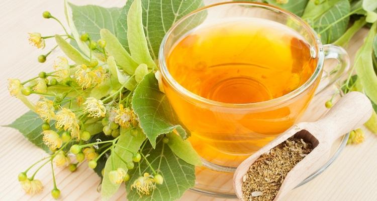 Липовый чай: полезные свойства и противопоказания. Цветки липы: полезные свойства для здоровья, рецепты отваров на все случаи