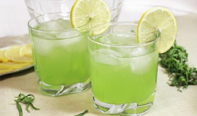 Трава тархун - его полезные свойства и приготовление напитка