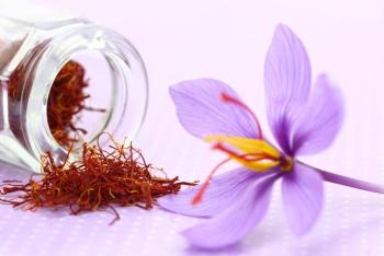 Шафран: полезные свойства для аллергиков, как принимать специю