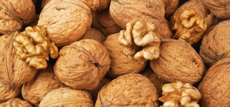 Грецкий орех: полезные свойства и противопоказания, области применения