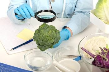 Полезные свойства брокколи для человека