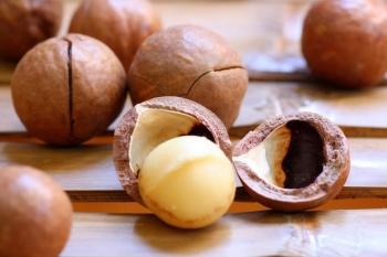 Орех макадамия: полезные свойства, применение в кулинарии