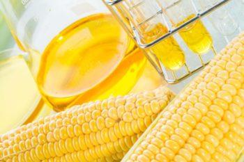 Как выбрать кукурузное масло?