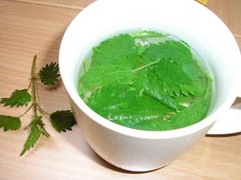 Как используют листья крапивы для похудения - полезные рецепты