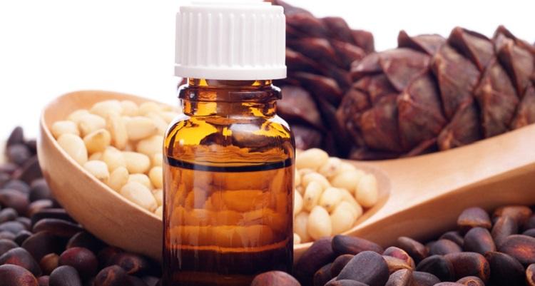 Кедровое масло: лечебные и полезные свойства и противопоказания
