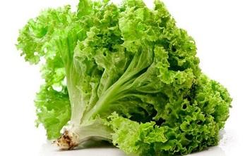 Применение листового салата в народной медицине - несколько рекомендаций