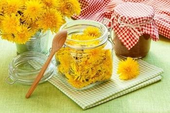 Состав и полезные свойства меда из одуванчиков - основные моменты
