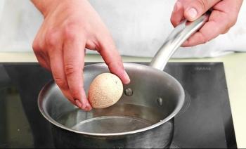 Яйца цесарки: польза и вред, применение в народной медицине
