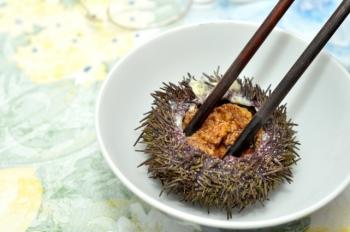 Состав, калорийность, пищевая ценность морского ежа и его икры