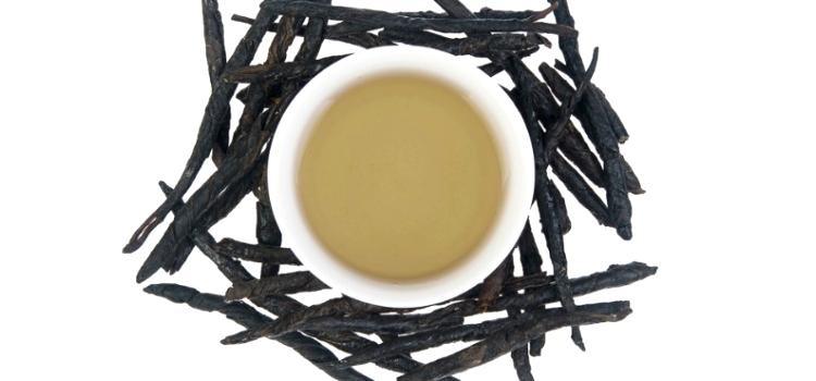 Чай кудин: польза и вред, полезные свойства и противопоказания, советы врачей