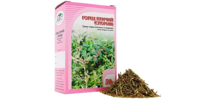 Спорыш (трава) – свойства и применение спорыша, спорыш при бесплодии, спорыш для почек. Спорыш птичий