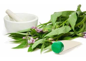 Окопник лекарственный: полезные свойства и противопоказания, применение в фармакологии