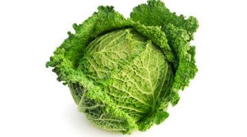 Савойская капуста: польза и вред