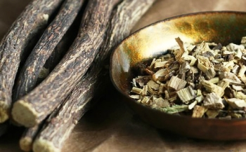 Солодка: полезные и лечебные свойства, противопоказания, применение в косметологии