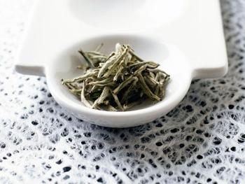 Белый чай: польза и вред, применение для лечения заболеваний
