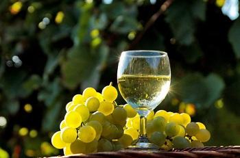 Диета на белом вине - плюсы и минусы, меню