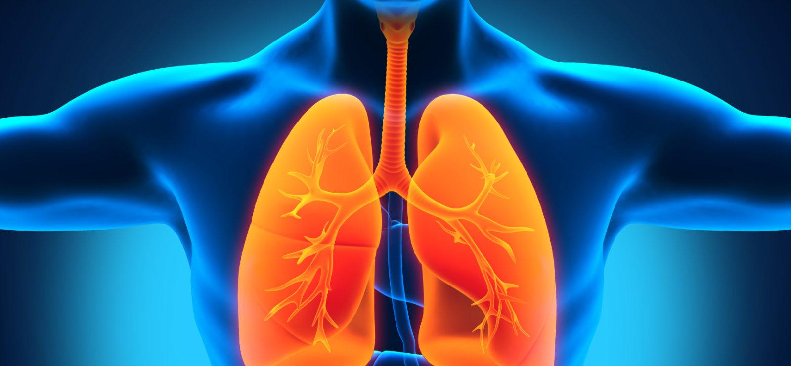 Диета при пневмонии у взрослых стол 15