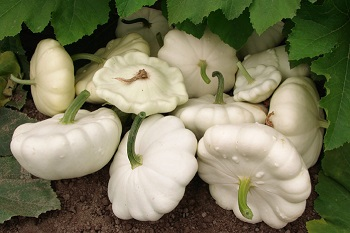 Собрали овощи