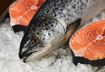 Замороженная красная рыба