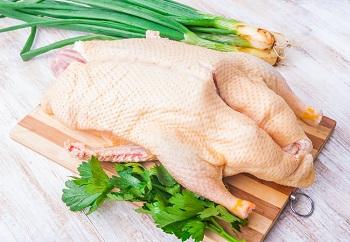 Мясо утки и правила выбора продукта