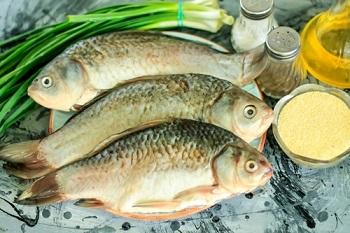 Рыба карась, как выбрать качественный продукт