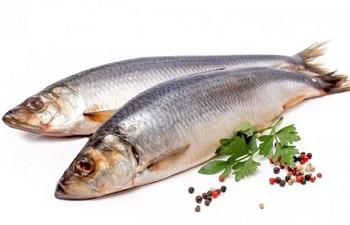 Правила выбора рыбы салаки, ценные свойства