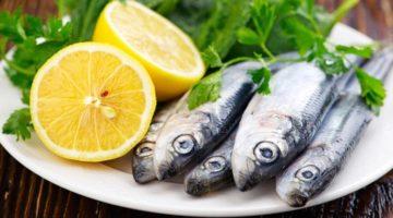 Польза и вред сардин для здоровья человека
