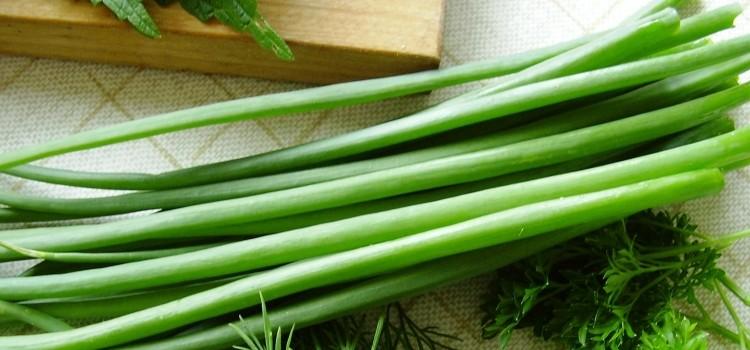 Важное о пользе зеленого лука для здоровья и его потенциальном вреде