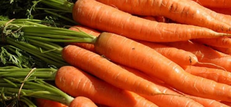 Чем полезна морковь для здоровья?