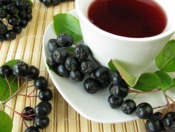 Особенности заготовки, хранения и употребления черноплодной рябины