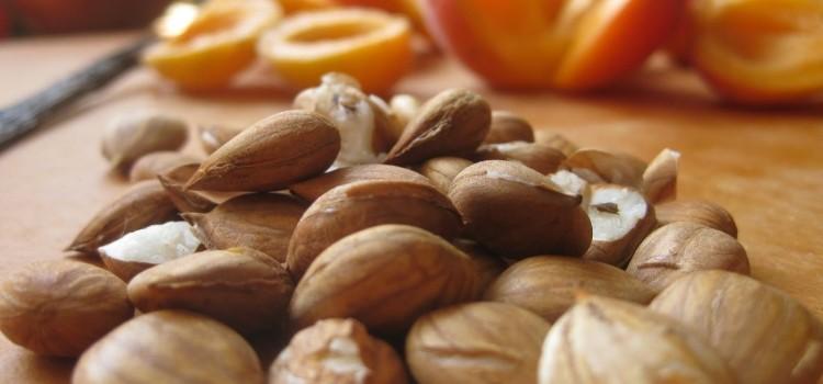 Все о пользе и вреде абрикосовых косточек для здоровья