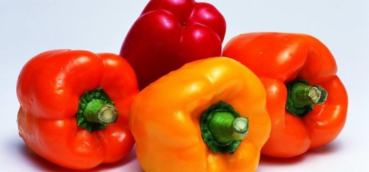 О пользе, вреде, свойствах и употреблении сладкого болгарского перца