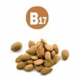 В каких продуктах содержится витамин В17 и для чего он нужен