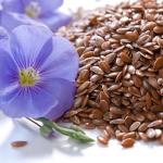 Польза и вред, применение и противопоказания семян льна