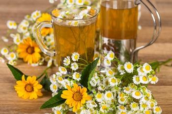 Химический состав ромашки аптечной и чем полезен ромашковый чай