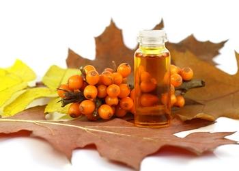 Облепиховое масло: польза и вред, как принимать, лечебные свойства