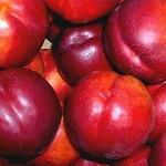 Правила выбора нектарина и какими полезными свойствами он обладает