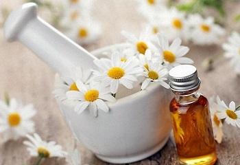 Ромашковый чай - лечебные свойства и какие существуют противопоказания