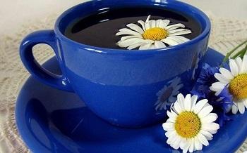 Целебные свойства ромашкового чая при лечении некоторых болезней