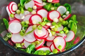 Полезные свойства редиски и вкусовые качества свежего овоща