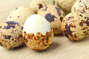 Польза перепелиных яиц для детского организма