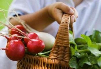 Редиска - какие существуют противопоказания к употреблению овоща