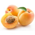 Чем полезны абрикосы для организма человека?