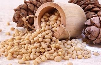 Использование кедровых орехов в лечебных целях - рецепты народной медицины