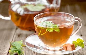 Какие существуют противопоказания к употреблению напитков из листьев смородины